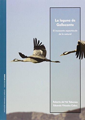 La laguna de Gallocanta : el incesante espectáculo de lo natural por Roberto del Val Tabernas, Eduardo Viñuales