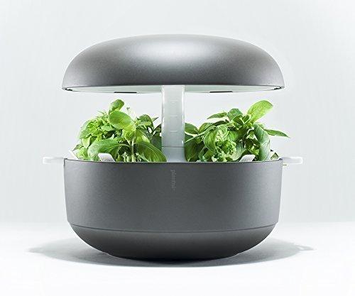 Plantui 6 Smart Garden Mini-Gewächshaus, grau