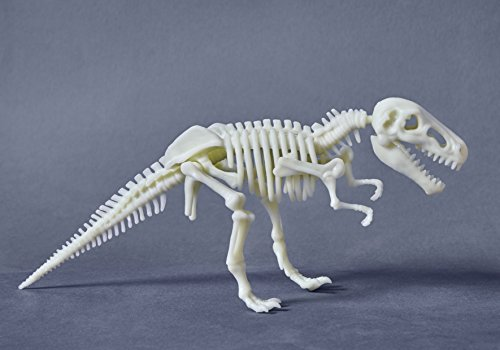 ds Glow-in-The-Dark-T-Rex ()