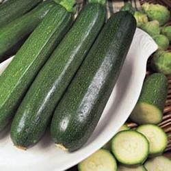 Légumes - Kings Seeds - Flux des paquets - Courgette - Tous les Green Bush