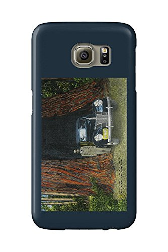 Big Basin State Park, California - View of the Auto Tree (Galaxy S6 Cell Phone Case, Slim Barely There) -
