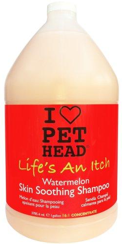 Pet Capo La vita è un prurito Shampoo 3.79 litri (N7f)