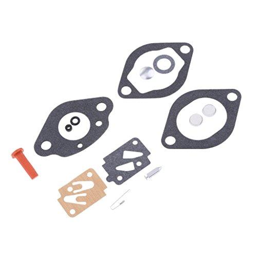 Baoblaze Vergaser Reparatur-Satz Dichtung Vergaseranlagen Vergaserüberholungs Werkzeuge Für Außenbordmotoren