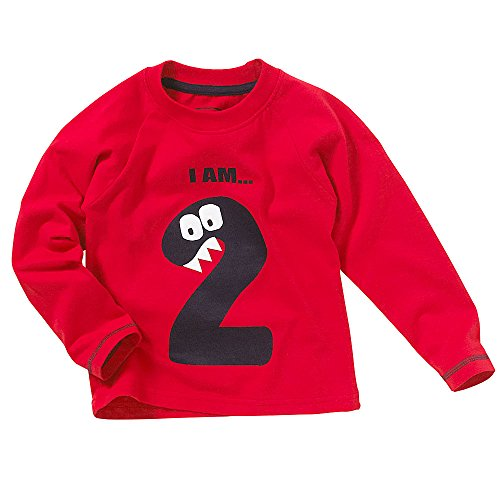 Toddler Boys Girls 1st 2nd 3rd 4th Birthday T-Shirt Tops Long Sleeve Cotton Stripes Characters - Red - Age 2