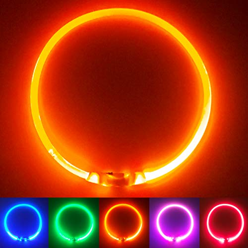PetSol Collier de sécurité à LED Rechargeable Ultra-Brillant pour Votre Animal de Compagnie (Batterie au Lithium Rechargeable) pour Une visibilité et Une sécurité accrues Orange