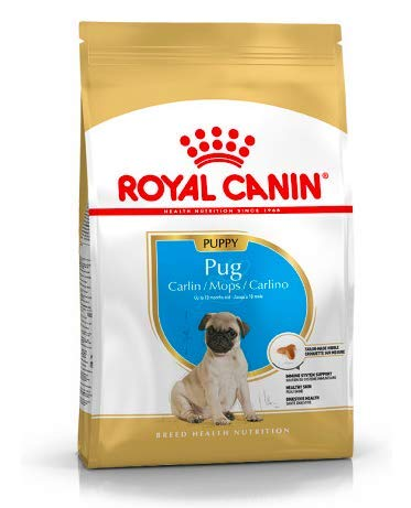 Maltbys' Stores 1904 Limited 1 5kg Royal Canin PUG PUPPY Breed Health  Nutrition Dog food
