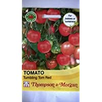ScoutSeed Semillas DE Frutas T&M Tomate Tumbling TOM Red Seed PVP £ 3.99
