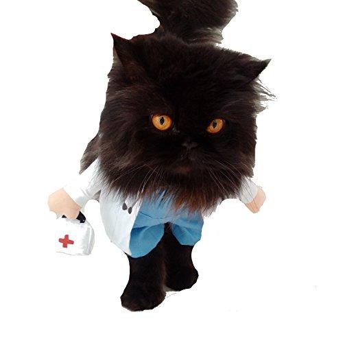 Super süße Hunde Katzen Kleid bis Halloween Funny Kostüm Arzt