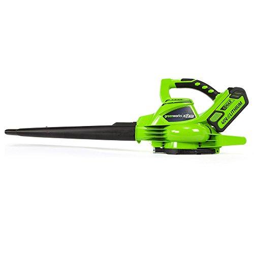 Greenworks Tools 24227UC 40 V Laubgebläse und Sauger inklusive 2 Akkus 2Ah und Ladegerät, 1 Stück, grün