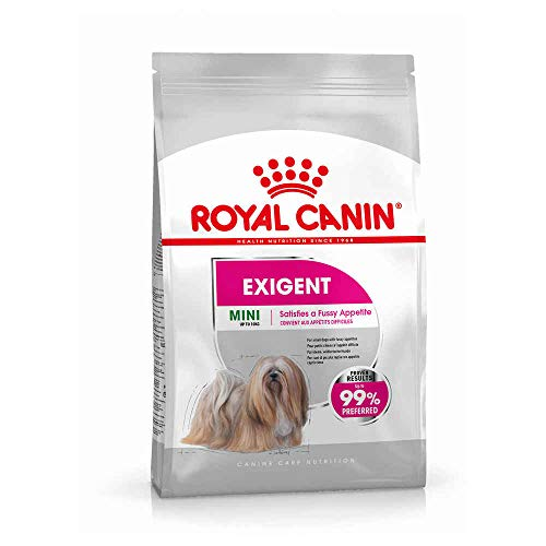 ROYAL CANIN Mini Exigent - 3 - Aroma Royal Canin Exigent