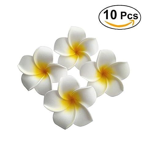 Frcolor Hawaiian Haar Blumen Strand Hochzeit Blume Haarspange, 10er Pack