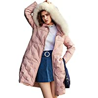 Dames Hooded Warm Down jas, Parker jas, jas Afneembare Faux Fur, Afneembare Faux Fur Travel Commuting winddicht Verdikte Zipper Down Jacket,Pink,L