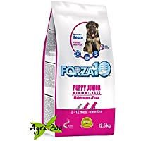 Forza10 Puppy Junior Medium e Large Pesce 12,5 Kg