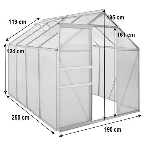 Zelsius Aluminium Gewächshaus für den Garten - 5