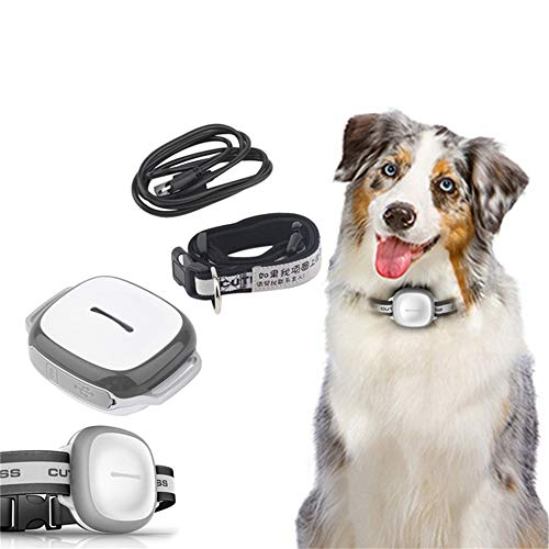 QNMM Inteligente Buscador de Mascotas Inalámbrico GPS Impermeable Mascota Perro Gato Exacto Collar Anti-Perdido Dispositivo de Localización de Rastreador de Seguridad