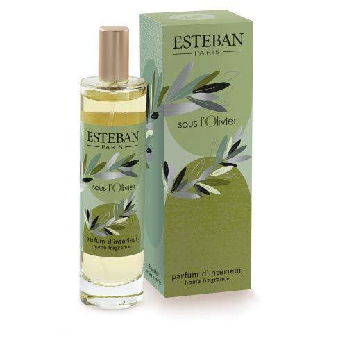 ESTEBAN Spray für Umgebungen Sous L' OlAnschluss 100 ml Home Fragrance (Home Spray Fragrance)