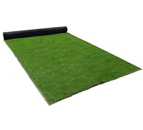 BYCDD Kunstrasen Rasenteppich, 8mm Realistische Ungiftig Kunstrasenteppich Kunststoffrasen für Hunde Haustiere Viele Größen,Green_1x2m/3x6ft -