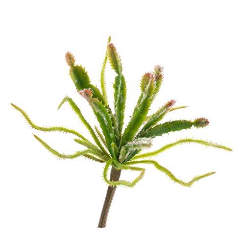 artplants - Künstliche Euphorbia Dolores auf Steckstab, grün-rot, 25 cm - Deko Sukkulente/Kunst Wolfsmilch Kaktus