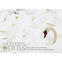 Oliver's Birds: By Oliver Hellowell