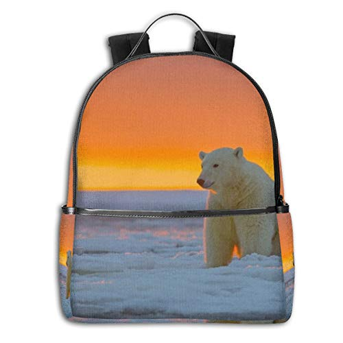 Alaska Kinder Rucksack Eisbär Eisbär Schnee Multifunktional College Bag Studenten Casual Daypack Reise Rucksack Schule Laptop Bookbag -