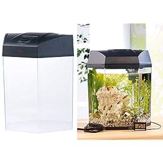 infactory Nano Aquarium: Beleuchtetes Panorama-Aquarium Hexagon, Komplett-Set, 19 l (Aquarien)