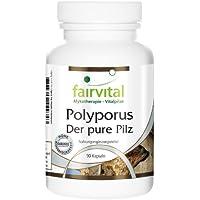 Preisvergleich für Polyporus 500mg - für 1 Monat - VEGAN - HOCHDOSIERT - 90 Kapseln - Polyporus umbellatus - Pilzpulver