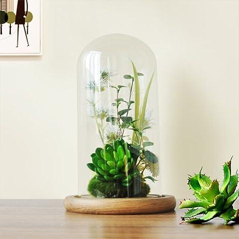 Lx.AZ.Kx Minimalista moderno piante di emulazione decorazioni Desktop Micro-Landscape ornamenti