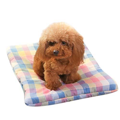 Amphia - Haustiermatte,Haustier-Hundekatze-Bett-Welpen-Kissen-Haus-Haustier-weiche warme - Mat Mann Kostüm
