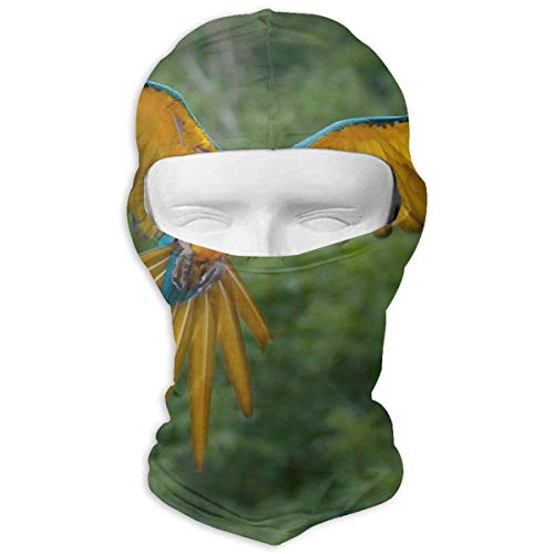 Xdevrbk Blue Gold Parrot Motorcycle Face Masks/Dust Protection Multivariant Scarf (Parrot Gear Head)