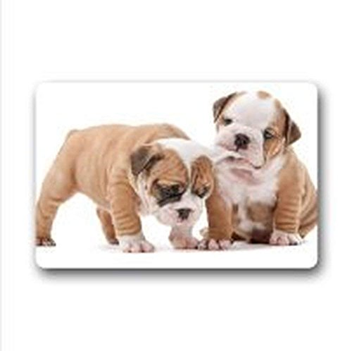 hat pillow Hi,Doormat Lovely English Bulldog Polyester Fiber Indoor/Outdoor Doormat Door Mat 23.6 x 15.7 inches