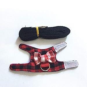 MYYXGS Hamster Leine – Geschirr – Geschirr – Brustgurt – verstellbar – weich und atmungsaktiv – kann spazieren gehen…