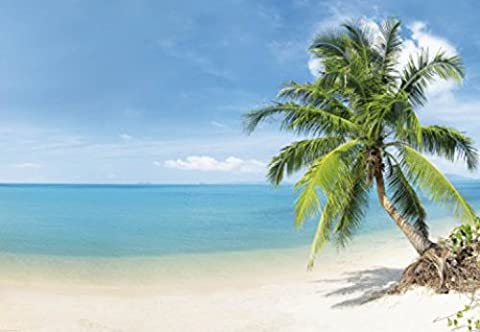 1art1 73125 Strände - Malediven Strand-Paradies, 3-Teilig Fototapete Poster-Tapete 360 x 250 cm