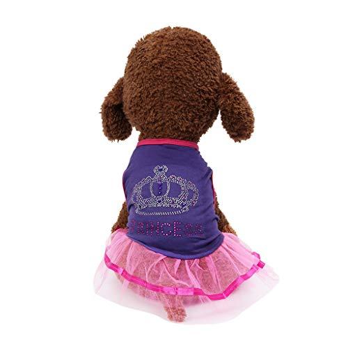 d Pet Kleider Prinzessin Hund Kleid Spitze Tutu Weste Rock für Kleine Hunde Katze Mädchen Sommer Bekleidung ()