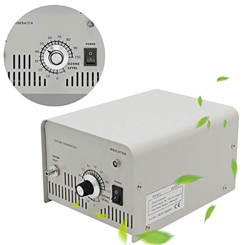 CGOLDENWALL Generador de Ozono 1000mg/h Purificador de Agua Ozono para Laboratorio...