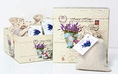 Direct Global Lavendelsäckchen 4 x 20 Gramm, Lavendelbeutel + dekorative Box, Zum Entspannen und Dekorieren des Hauses, Lavendelblüten