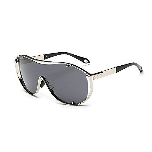 Ppy778 Sonnenbrillen Herren Sport Herren Polarisierte Sonnenbrillen Anti-Glare Driving Eyewear Metall Sonnenbrille (Color : Silver)