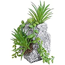 draulic Jardín Trabajo Mini Artificial Bonsai, de plástico crasas, Jardín Simulación macetas, balcón