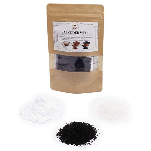 Salze der Welt | Gourmetsalze für den Feinschmecker mit Rezepten | Salzen von Backwaren, Gemüse & Fleisch A-Z in Premium-Qualität | glutenfrei | 70g