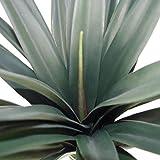 Leaf LEAF-7098 Grande Plante Artificielle, 90 cm Yukka, 90cm