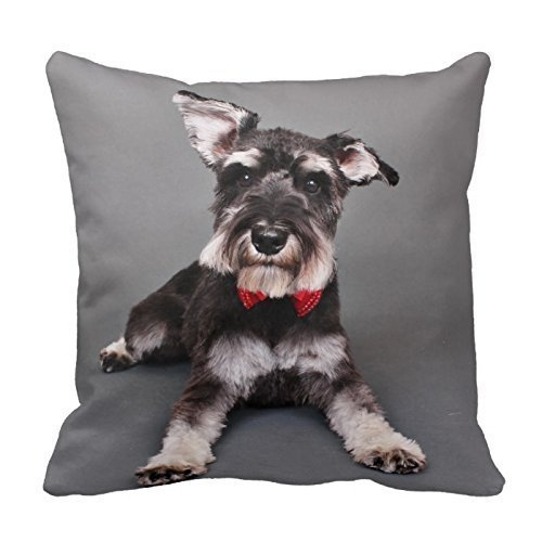 Linkla Danniol Generic Custom Pillow Cover Cotton 18 X 18 Twin Sides Schnauzer - Tom Dooley Throw Pillowcase