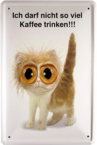 Blechschild kleine Katze Spruch
