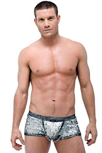 gregg-homme-hercules-boxer-brief-waist-30-x-small-silver