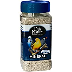 Deli Nature Minerals 660 gm