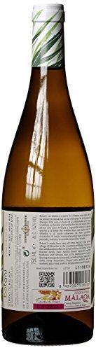 Jorge-Ordoez-Botani-Moscatel-Seco-Sierras-de-Mlaga-DO-2016-trocken-1-x-075-l