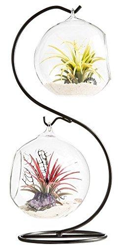 Mkouo - Terrario aéreo para plantas, colgador de plantas, globo contenedor de plantas, hiervas decorativas, artificial, exhibición exquisita, vaso para velas (con un soporte negro de metal) - 1 globo, Brown/Clear, 2