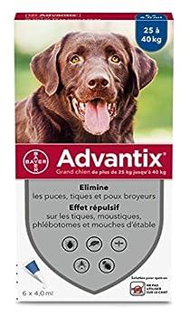 ADVANTIX Grand Chien - Anti-Puces et Anti-Tiques - 25-40KG - 6 Pipettes