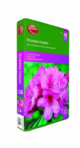ambassador-ericaceous-compost-40l