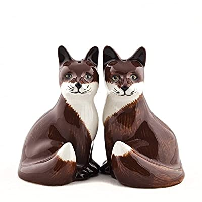 Quail Ceramics - Fox Salt And Pepper Pots from Quail Ceramics