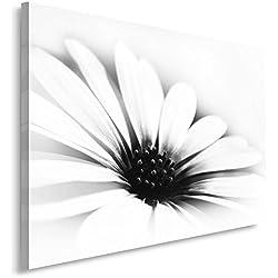 Feeby. Cuadro en lienzo - 1 Parte - 70x100 cm, Imagen impresión Pintura decoración Cuadros de una pieza, MARGARITA, FLOR, NATURALEZA, BLANCO Y NEGRO