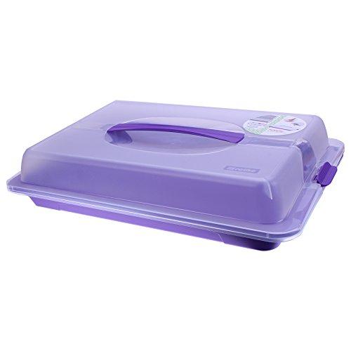 Rotho Partybutler Lila Kuchen Brötchen Container Kuchenträger Kuchenbehälter